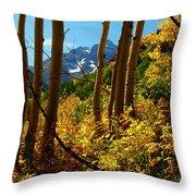 Autumn Brilliance 2 Throw Pillow