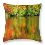 Autumn Brilliance Throw Pillow
