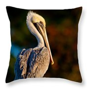 Autumn Brown Pelican Throw Pillow