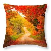 Autumn Cameo Road Throw Pillow