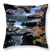 Autumn Cascade Throw Pillow