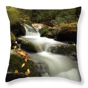 Autumn Cascades In Tennessee Throw Pillow