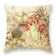 Autumn Catbird Throw Pillow