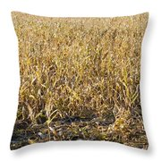Autumn Cattle Silage Corn In Maine Throw Pillow by Keith Webber Jr