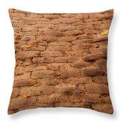 Autumn Cobble Stone Road II Throw Pillow