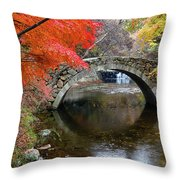 Autumn Color And Old Stone Arched Throw Pillow