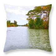 Autumn Color In Norfolk Botanical Garden  2 Throw Pillow