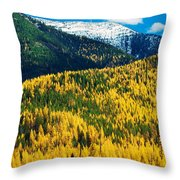 Autumn Color Larch Trees In Pine Tree Throw Pillow