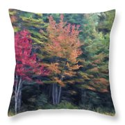 Autumn Color Painterly Effect Throw Pillow