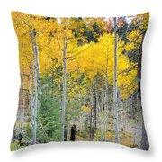 Autumn Colorado-1 Throw Pillow