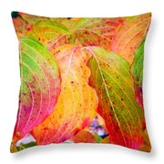 Autumn Colored Leaves Throw Pillow