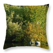 Autumn Colors 1 Throw Pillow