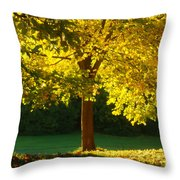 Autumn Colors 10 Throw Pillow