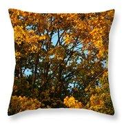 Autumn Colors 11 Throw Pillow