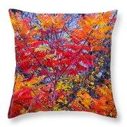 Autumn Colors - 113 Throw Pillow