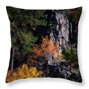 Autumn Colors 2 Throw Pillow