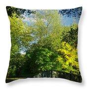 Autumn Colors 4 Throw Pillow