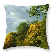 Autumn Colors 6 Throw Pillow