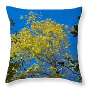 Autumn Colors Against The Sky Throw Pillow