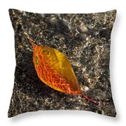 Autumn Colors And Playful Sunlight Patterns - Cherry Leaf Throw Pillow