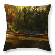 Autumn Colors By The Creek  Throw Pillow