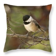 Autumn Colors Chickadee Throw Pillow