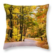 Autumn Colors - Colorful Fall Leaves Wisconsin - II Throw Pillow