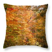 Autumn Colors - Colorful Fall Leaves Wisconsin IIi Throw Pillow