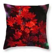 Autumn Colors Early Throw Pillow