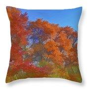 Autumn Colors I Digital Paint Throw Pillow