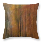 Autumn Colors IIi Throw Pillow