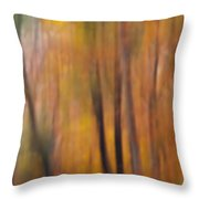 Autumn Colors Iv Throw Pillow