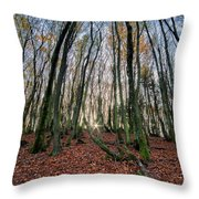 Autumn Colors In The Forrest Throw Pillow