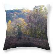 Autumn Colors Of Valley Forge Throw Pillow by Bill Cannon