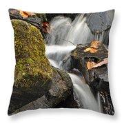 Autumn Colors On Big Crabtree Creek Throw Pillow
