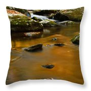 Autumn Colors On Little River Throw Pillow