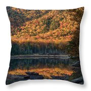 Autumn Colors Reflected In Stream Throw Pillow