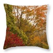 Autumn Comes To The Burbs Throw Pillow