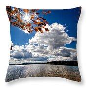 Autumn  Confidential  Throw Pillow by Bob Orsillo