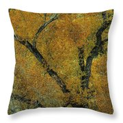 Autumn Contrast Throw Pillow