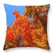 Autumn Contrasts Throw Pillow