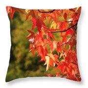 Autumn Cornered Throw Pillow