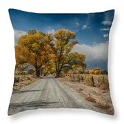 Autumn Country Road Throw Pillow