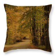 Autumn Country Road Throw Pillow