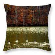 Autumn Cove Throw Pillow
