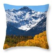 Autumn Curtains Throw Pillow