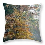 Autumn Cypress Throw Pillow