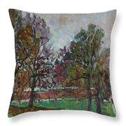 Autumn Day In Borodino Throw Pillow