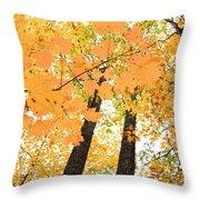 Autumn Days Throw Pillow