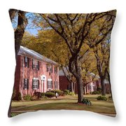 Autumn Days Throw Pillow